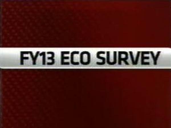 Decoding Economic Survey 2012-13