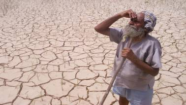 Centre approves Rs 795 cr drought assistance to Karnataka