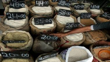 Govt's rice procurement rises marginally to 69.89 LT so far