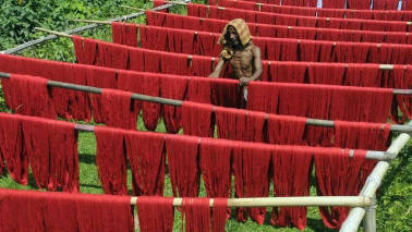 NGT allows reopening of textile units in Rajasthan