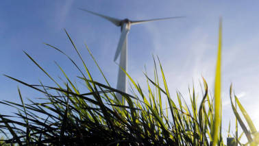 Favourable winds blowing? Producers of the renewable power beg to differ