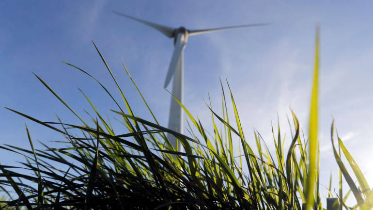Inox Wind tanks 7% despite company's clarification on insolvency case