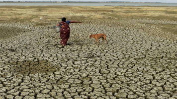 UP govt takes steps to help farmers hit by drought, floods: UP Agri Minister