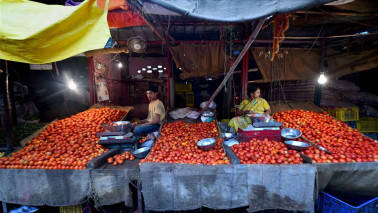 Tomato prices skyrocket as heavy rains cause shortage in supply