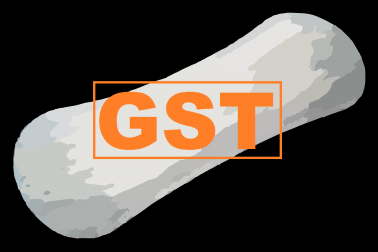 Kerala assembly passes GST bill