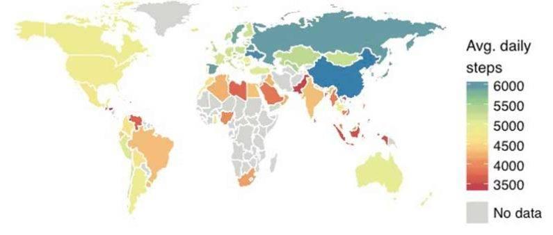 standford worldwide steps