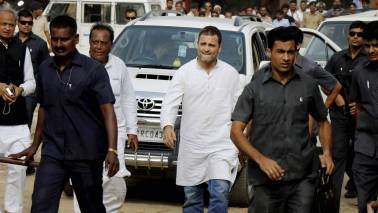 Divisive forces out to destroy country's social fabric: Rahul Gandhi