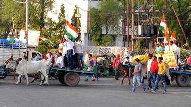 Rajasthan: Congress takes out bullock cart rally against rising petrol price