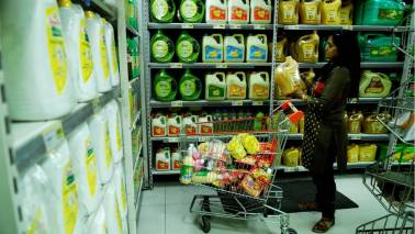 India raises import tax on edible oils: Government order