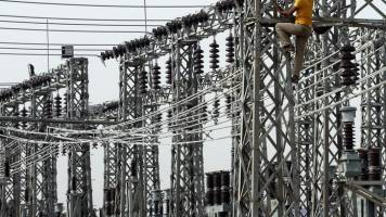 Govt to probe if private developers exaggerated stressed power projects