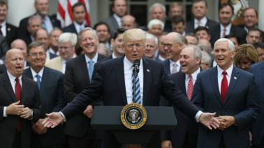 Year one in office: Donald Trump rides economic boom, xenophia wave
