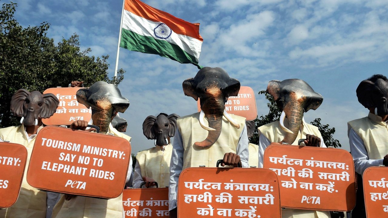 PETA members, dressed as elephants, display placards during a protest demanding from Tourism Ministry to ban on elephant rides, at Connaught Place in New Delhi on Wednesday. (PTI)