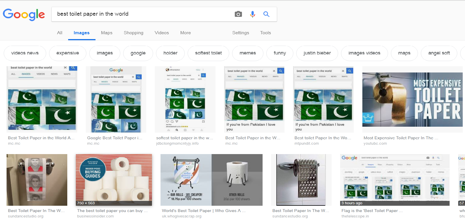 Best Toilet Paper 2019 Google image search shows Pakistan flag for 'best toilet paper in