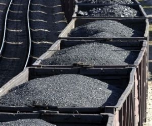 Government to allot 11 mines to Coal India Ltd, says Piyush Goyal