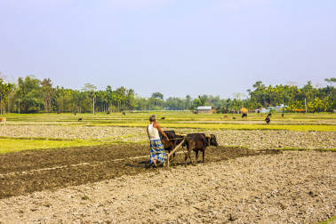 Government eases credit norms for small and marginal farmers