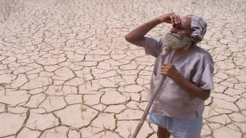 Gujarat seeks Rs 1,725 crore in drought relief from Centre
