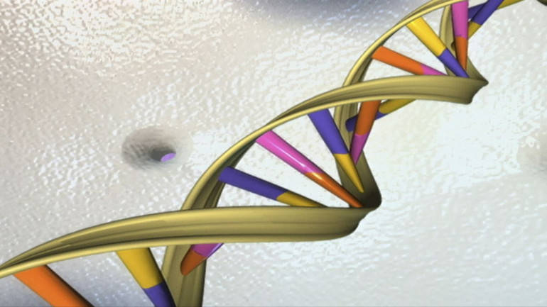 DNA editing tool CRISPR can cause serious genetic damage, scientists warn