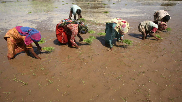Mobile app groundwater data for farmers - Moneycontrol com
