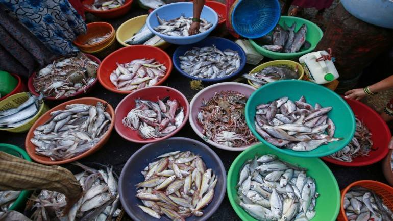 USD 6 billion worth seafood exports expected this fiscal