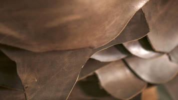 Leather industry eyeing 5-6% growth in 2018-19: CLE