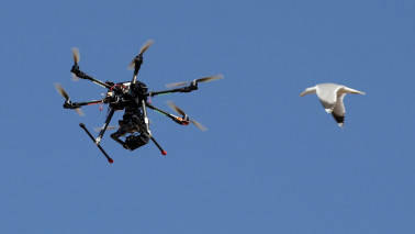 Registration process for drone operations to begin soon: DIPP