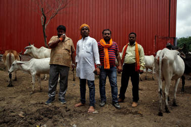Madhya Pradesh set to become first state to enact law against cow vigilantism: Report