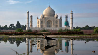 Indian tourism industry holds potential to grow by 2.5%: Study