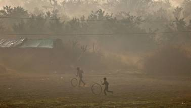 Punjab, Haryana breathe easy as rain washes out dust; flight services resume