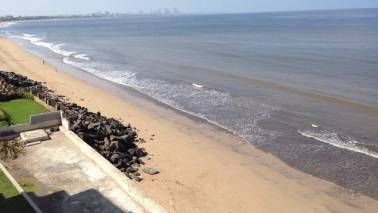Govt's 'Make in India' function caused damage to Mumbai beach: HC