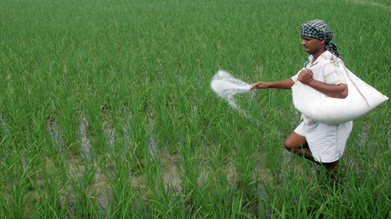 Fertiliser stocks gain as govt extends urea subsidy scheme