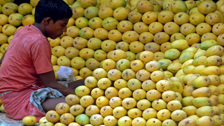 Mango faces summer trouble: Poor quality, higher prices pinch consumers - Moneycontrol.com