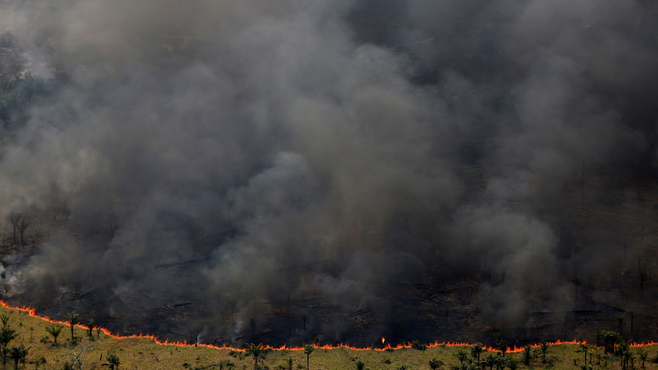 "Burning forest is seen during ""Operation Green Wave"" conducted by agents of the Brazilian Institute for the Environment and Renewable Natural Resources, or Ibama, to combat illegal logging in Apui, Brazil on August 4, 2017. (Reuters)"