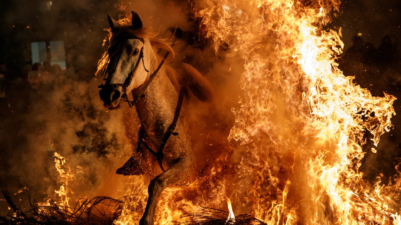 """A man rides a horse through flames during the annual """"Luminarias"""" celebration on the eve of Saint Anthony's day, Spain's patron saint of animals, in the village of San Bartolome de Pinares, northwest of Madrid, Spain. (REUTERS)"""