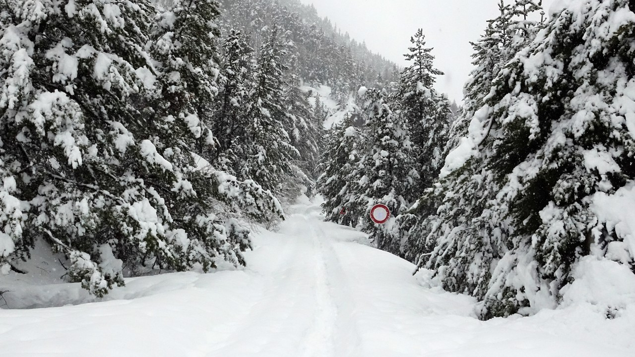 The way where migrants try to cross from Italy to France is seen after heavy snowfall, in Bardonecchia, Italy,  (REUTERS)
