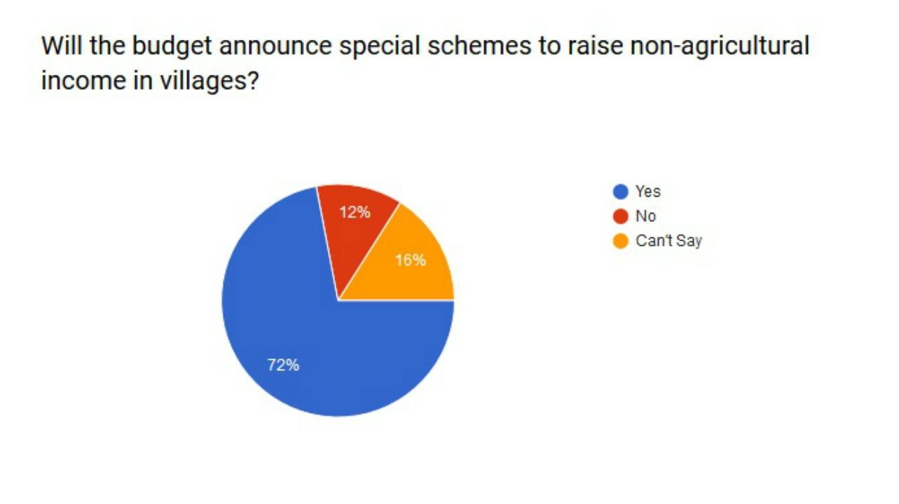 Will the budget announce special schemes to raise non-agricultural income in villages?
