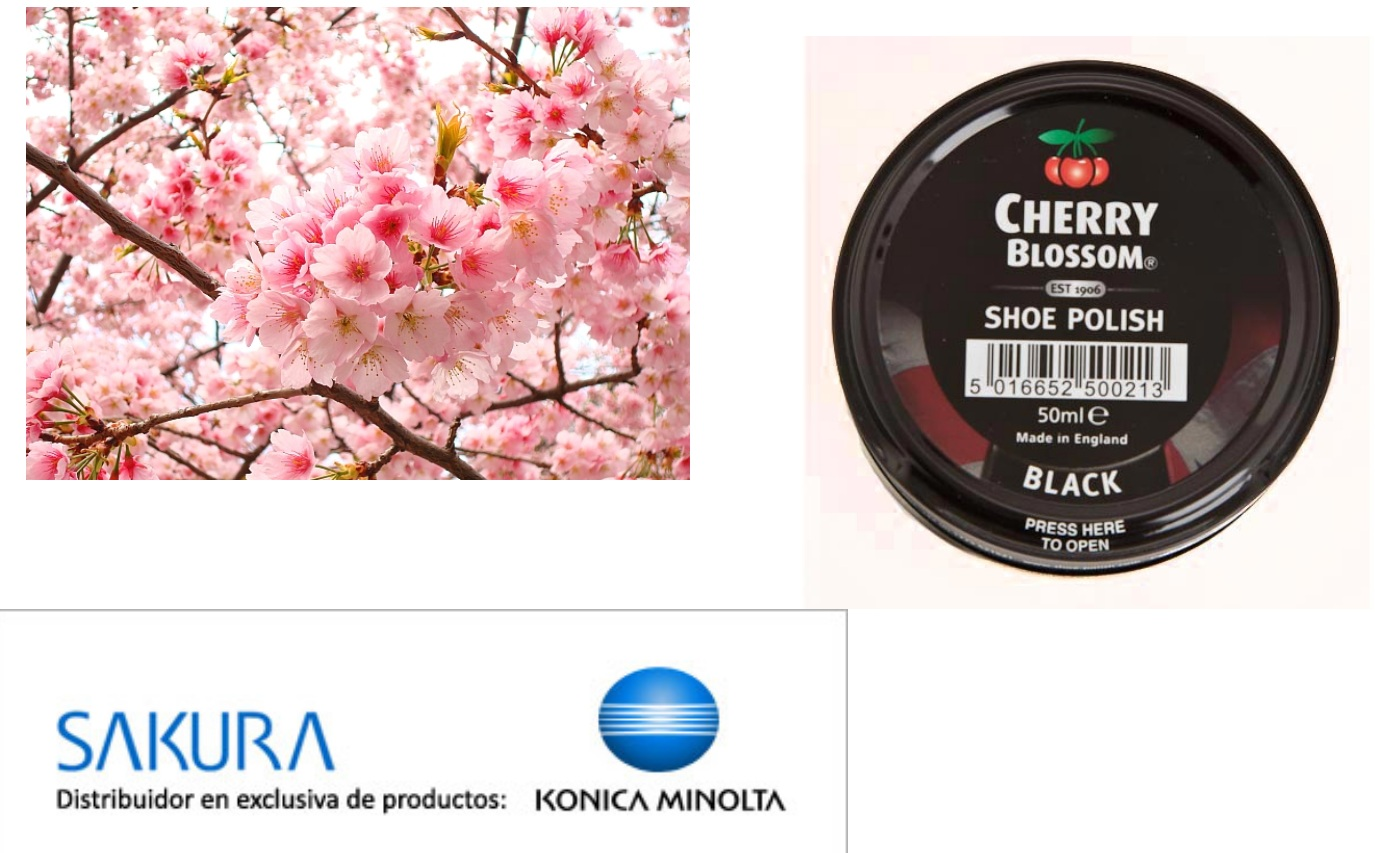Ans 11: Sakura, the original name of Konica and Cherry Blossom shoe polish from the English name for Sakura.