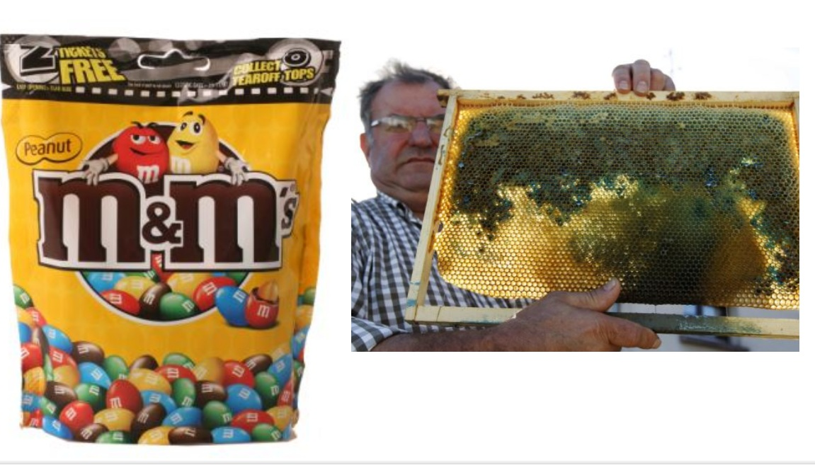 Ans 15: M&M's. The Mars factory there has been producing M&M's, bite-sized candies in bright red, blue, green, yellow and brown shells, and processing their waste that are of these colours.