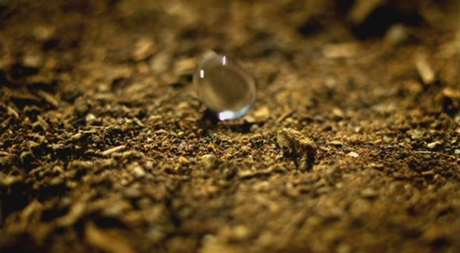 Ans 18: Petrichor, the smell of rain on dry earth.