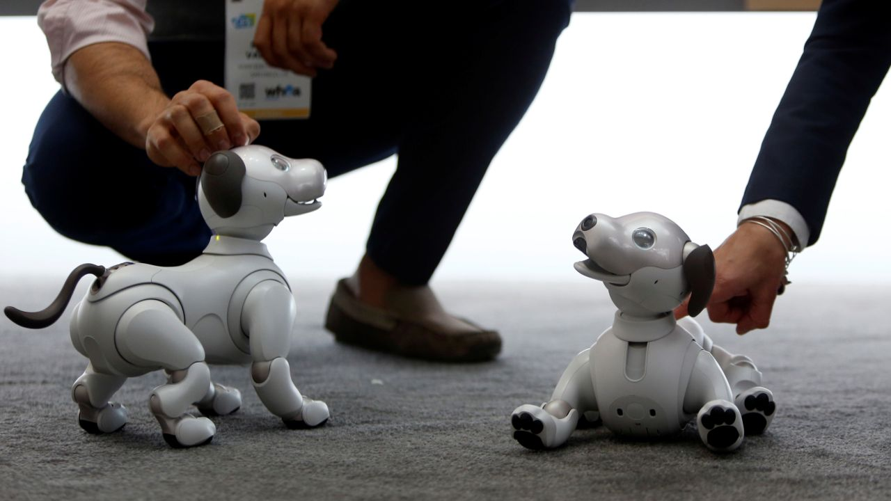 Sony's Aibo robotic dogs are displayed during the CES 2018. (Reuters)