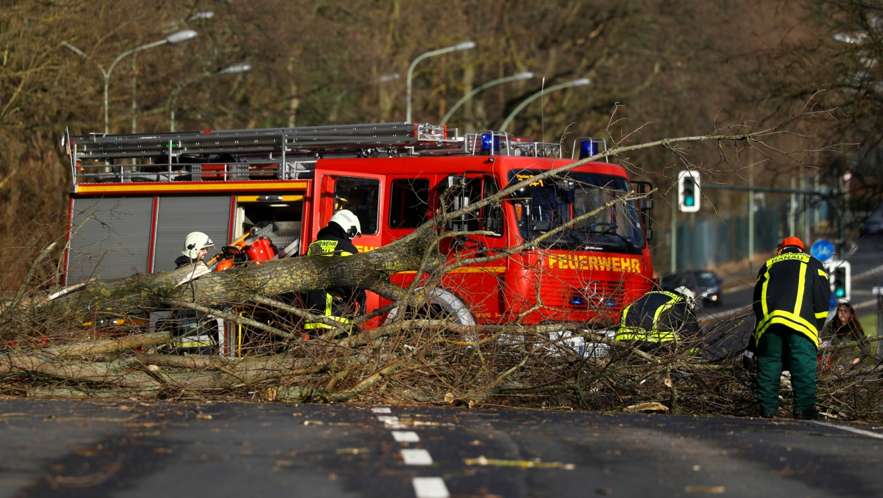 Firefighters work by a fallen tree during stormy weather in Hanau, Germany. (Reuters)