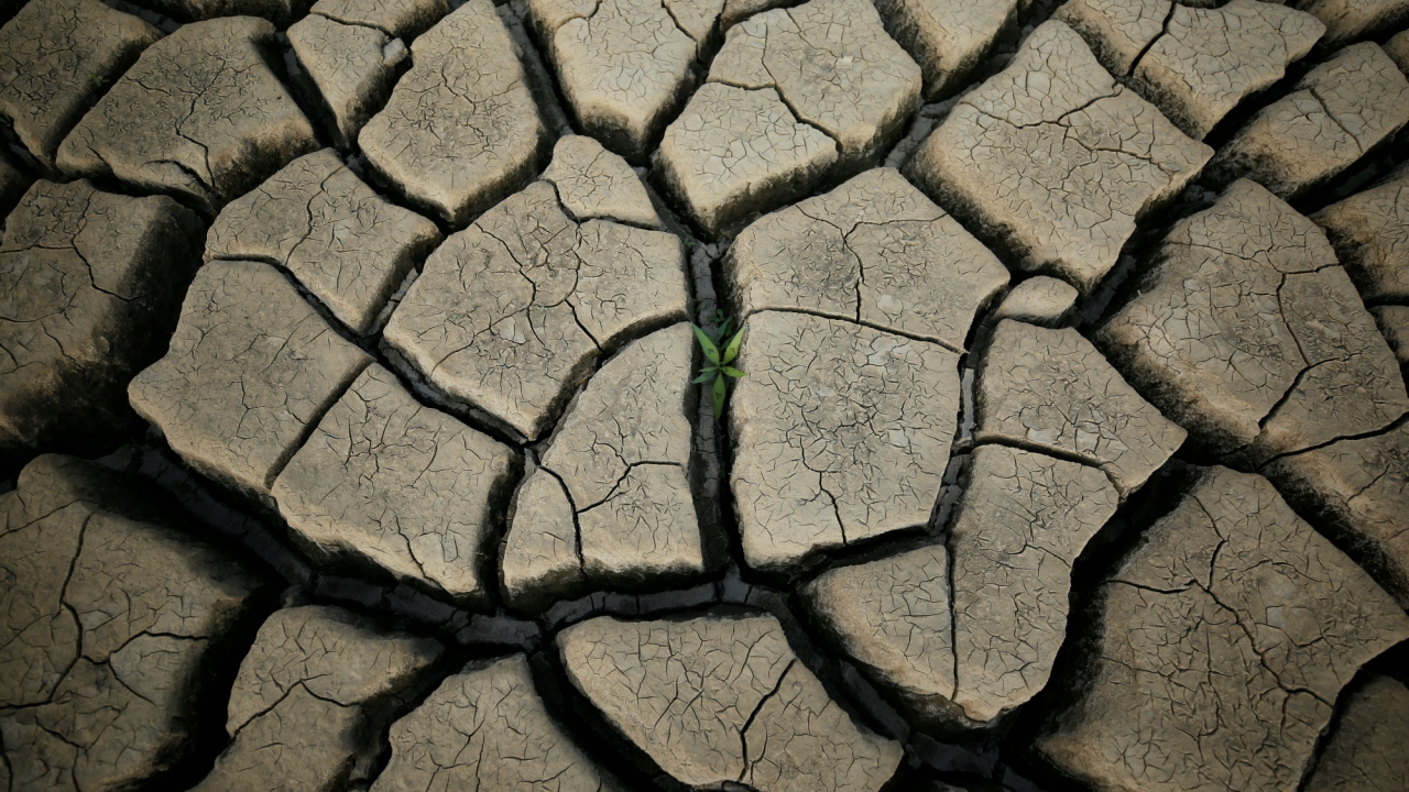 South Africa has declared a national disaster over the drought afflicted southern and western regions, including Cape Town, which means the government could spend more money and resources to deal with the crisis. (Reuters)