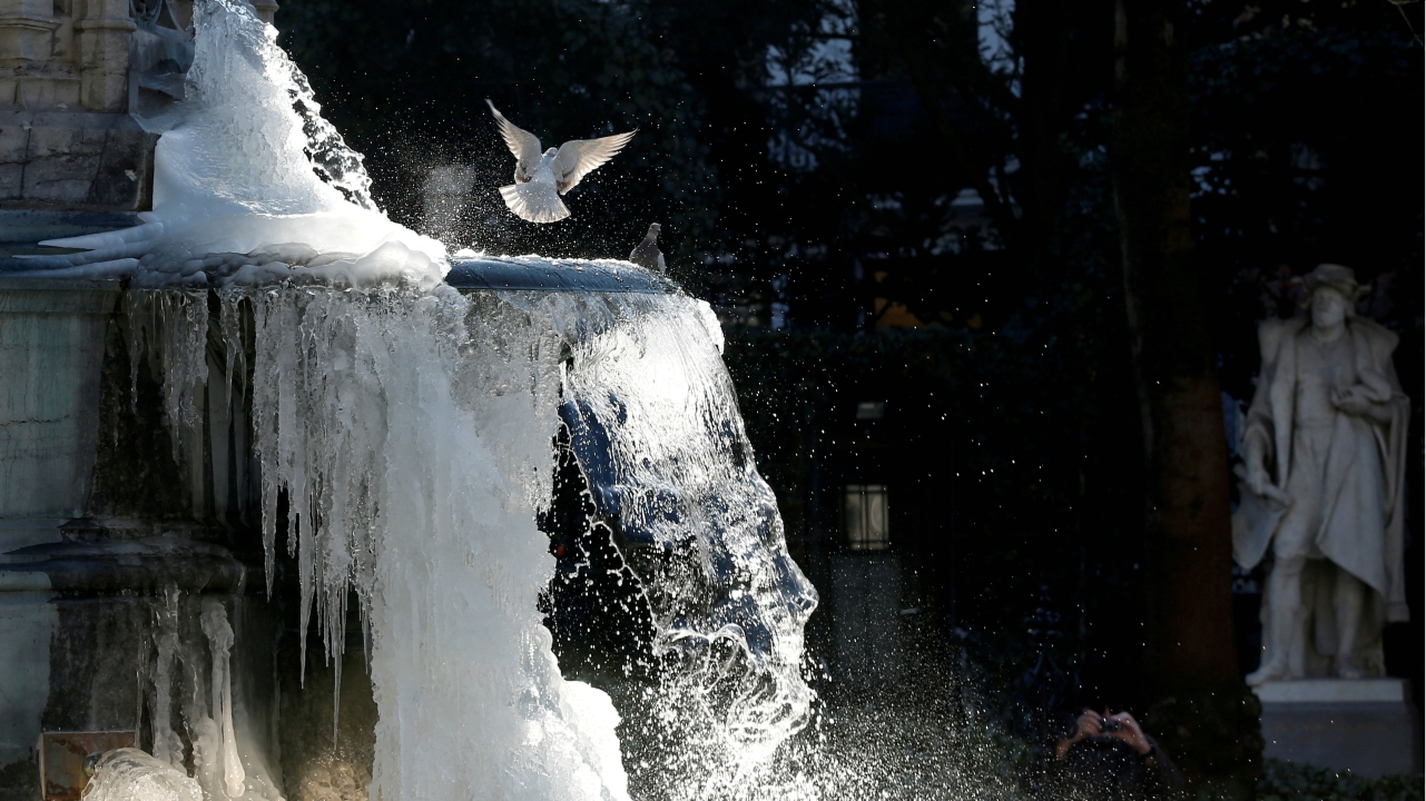 Pigeons are seen as ice partially covers the fountain of the Counts of Egmont and Hornes on a cold winter day in central Brussels, Belgium. (REUTERS)