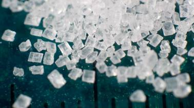 Opinion   Kicking its sugar addiction should be Modi govt's priority if it returns in May