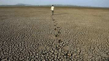 Rajasthan seeks over Rs 2,819 cr from Centre for 9 drought-affected districts