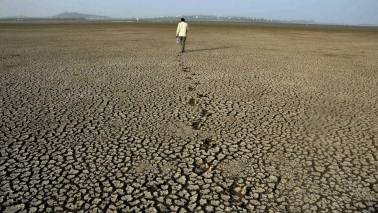 CM fund gave Rs 50.50 cr for drought relief in 45 months: RTI