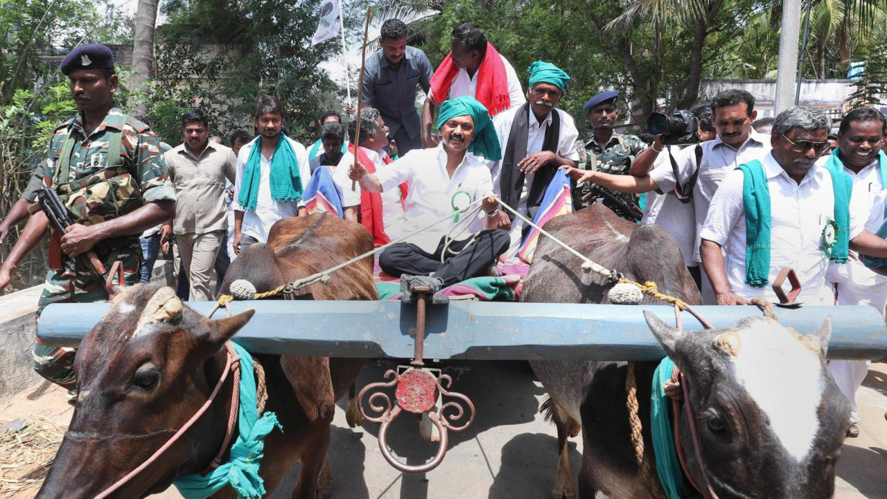 DMK working President MK Stalin rides a bullock-cart during the fourth day of his mega rally, which covers the Cauvery basin region of Tamil Nadu, seeking immediate constitution of a Cauvery Management Board, in Thiruvarur. (Image: PTI)
