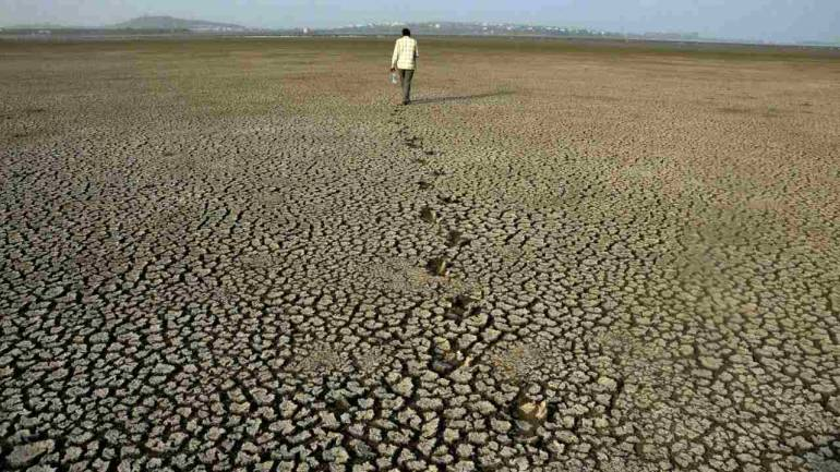 A man walks on a part of the parched dried-up bed of Upper Lake on the occassion the World Earth Day in Bhopal. World Earth Day is marked in many countries annually on 22 April to raise awareness of the earth's environment. (PTI)