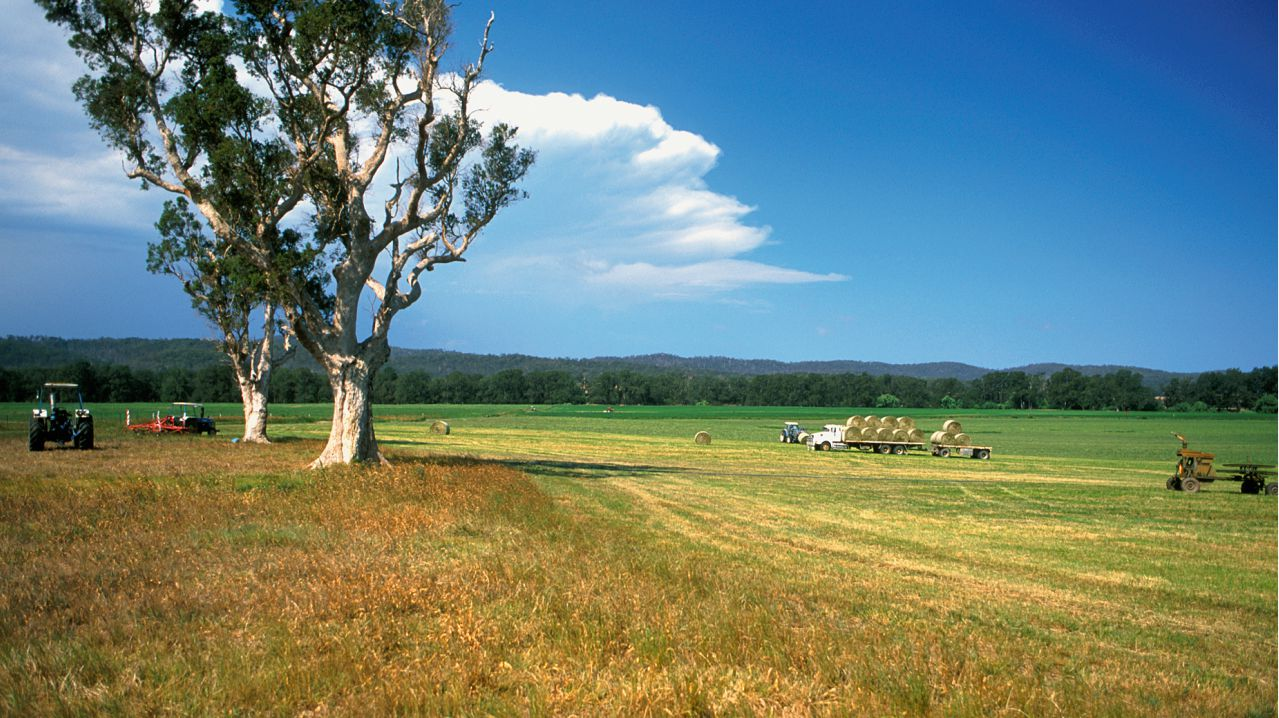 6. MacLachlan family | 5.75 million hectares | The Jumbuck Pastoral Company was set up in 1888 in Adelaide by HP MacLachlan, which controls 5.75 million hectares across Australia. It is the country's leading wool supplier. (Image: WikiMedia)