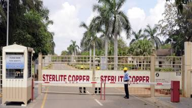 Sterlite asks staff to join back to clean up plant site