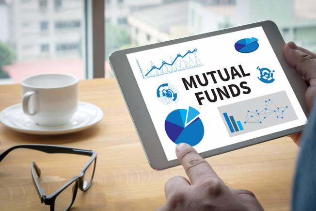 Image result for Mutual Fund Portfolio